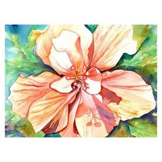 Double Peach Tropical Hibiscus Original Watercolor Painting... ❤ liked on Polyvore featuring home, home decor, wall art, flower wall art, golf paintings, flower home decor, peach wall art and flower stem