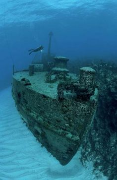 Shipwreck diving. / Appears as if it's just sitting suspended in mid air :)