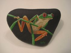 Red Eyed Tree Frog Hand Painted on A Rock