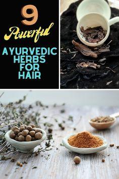 Top 9 Ayurvedic Herbs For Hair Growth And Thickness, Ayurveda For Hair, Ratanjot For Hair, Brahmi, Mulethi, Hibiscus Benefits For Hair #herbsforhealth #healthsupplements #naturalsupplements #ayurveda #ayurvedalife #honeyfurforher