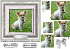 Lovely Little Chihuahua In a Silver Frame Pyramid  on Craftsuprint - Add To Basket!