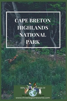 The final stop on my East Coast Canada Roadtrip and one of my absolute favorites. East Coast Canada, Cape Breton, Highlands, North America, Road Trip, National Parks, Check, Road Trips