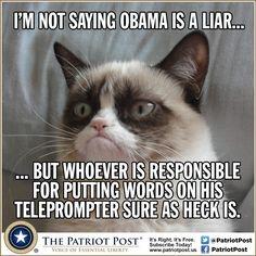 Obama in Paris — The Patriot Post