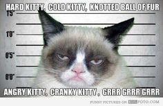 """Hard kitty, cold kitty, knotted ball of fur, angry kitty, cranky kitty, grrr grrr grrr."""