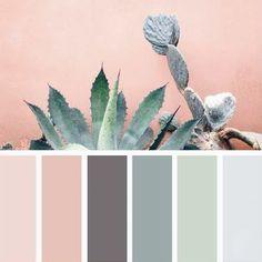 colors #inspiration #color #succulent