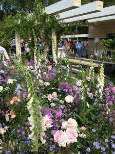 RHS Chelsea Flower show 2016 Smart Garden