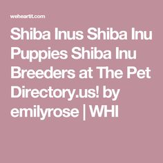 Shiba Inus Shiba Inu Puppies Shiba Inu Breeders at The Pet Directory.us! by emilyrose | WHI