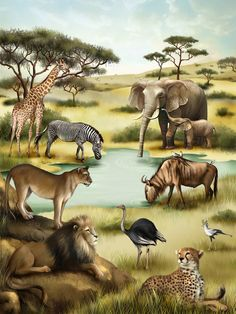 African animals children's puzzles puzzles shop us ravens Jungle Animals, Animals And Pets, Cute Animals, Animal Paintings, Animal Drawings, African Animals, Wildlife Art, Nature Wallpaper, Pet Birds