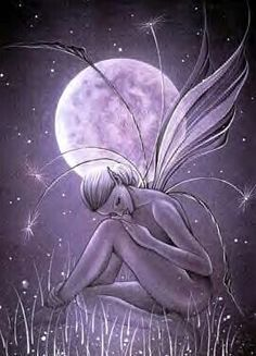 Night fairy.