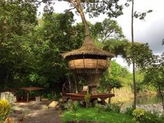 El Rio Encantado is a 100 acre private Eco Lodge/Nature Resort on both sides of the river Caldera on a . Cabana, Rio, Smoke Alarms, House Beds, Private Room, In The Tree, Hot Springs, Traveling By Yourself, Gazebo