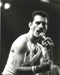 freddie mercury smiling freddie mercury 1979
