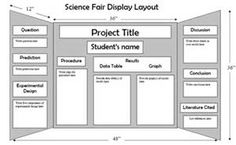 science fair project format bing images