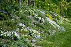 Create a Faux Rock Garden on a Hillside or Berm | State-by-State Gardening Web Articles