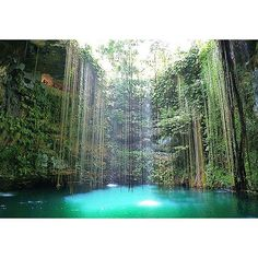 Cenote Ik Kil, Chichen Itza, Yucatan, Mexico