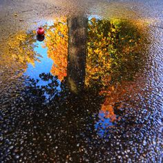 Mirror mirror on the ground...