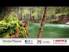 Propuse se declare área natural protegida la barranca del río verde y santiago.