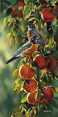 """Rosemary Millette Limited Edition Print:"""" September Apples-Robins """" - Rosemary…"""