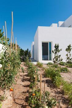 Summer House in Santorini by Kapsimalis Architects