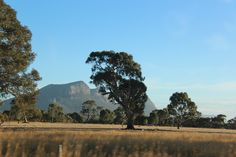 The beautiful Grampians  western district of Victoria, my darling's home  photo by jadoretotravel