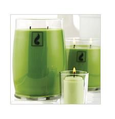 Inspired Decor The season Bella takes some of our best scents and gives them a vibrant modern look. Bold colours and sleek style make this the perfect statement piece to change up your decor Scented Candles, Candle Jars, Candle Holders, Gold Canyon Candles, Happy Everything, Bold Colors, Colours, Glass Of Milk, Custom Design