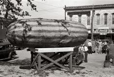 """May 1939. """"Statue to the watermelon. Weatherford, Texas, watermelon center."""""""