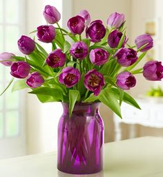 Purple Tulips - Saw it while I was    looking for Taylor Swift's    latest concert! ;)