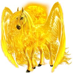 """Pegasi are another species on howrse.  They can't be bred.  By giving your horse the """"Medusa Blood"""" (black market items) your horse will become a Pegasus."""