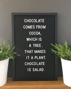 chocolate chocaholic cocoa chocolatelover tree plant salad vegan quote quotes letterbox letterboxquotes letterboard planting planting quotes is part of Message board quotes - Felt Letter Board, Felt Letters, Felt Boards, Word Board, Quote Board, Message Board, New Funny Memes, Funny Quotes For Teens, Funny Vegan Quotes