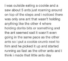 Made the ant's day