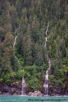 Kenai National | Kenai Fjords National Park | Everything Alaska | Pinterest