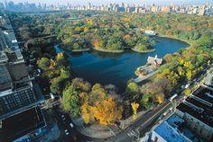#LugaresMásDivertidosDeNY - Trotar por la mañana, andar en bici o simplemente caminar: Central Park