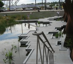 Urban wetland, The Pearl district, Portland Oregon.