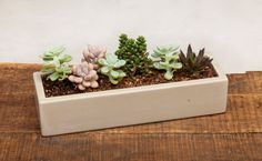 Concrete Planter Petite Runner  13L x 4W x  2.75H by OpusStone, $40.00