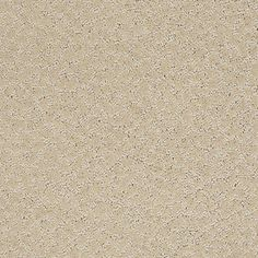 Color: 00107 Yearling CCS20 Capellini - Shaw Caress Carpet Georgia Carpet Industries