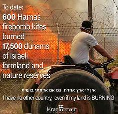 Kite Firebombs From Gaza #Terror #IsraelUnderFire #Zionism #isrl4evr #israel #israeli #Iamisrael #Israelforever #shalom #Iamisrael #proisrael #iloveisrael #SupportIsrael #EretzYisrael #LandofIsrael #zionhometostay #JewishUnity