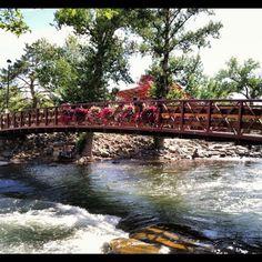 @coolcatlove Truckee River in downtown #Reno #instagram