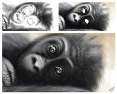 Es una ilustración digital, basada de la fotografía de Mariana Cano Monkey, Animals, Mariana, Digital Illustration, Jumpsuit, Animales, Animaux, Monkeys, Animal