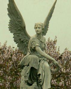 Angel Statue in Nijmegen, Niederlande, Angel Aesthetic, Aesthetic Art, Aesthetic Statue, Ed Wallpaper, Renaissance Kunst, Greek Statues, Cemetery Art, Angel Art, Art Inspo