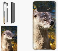 Otter Phone Cases, Iphone Case, Cute Gift Ideas, Otter Gifts, by DAM Creative Galaxy Phone Cases, Samsung Galaxy, Sea Otter, Canvas Prints, Art Prints, Otters, Samsung Cases, Cute Gifts, Iphone Case Covers