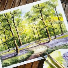 Tree painting with good light, shadows and depth. painting t Watercolor Trees, Watercolor Landscape, Landscape Art, Landscape Paintings, Watercolor Paintings, Watercolor Drawing, Watercolors, Landscapes, Painting Art