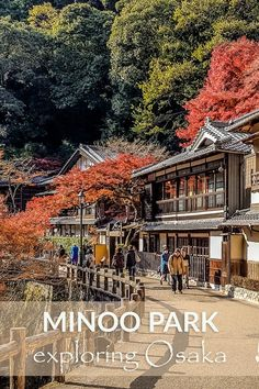 Planning a trip to explore Minoo Park and Falls in Osaka. These are the tips you need and what to see for along the way. #Osaka #Japan #MinooFalls