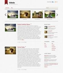 Edmin WordPress Theme By Themify