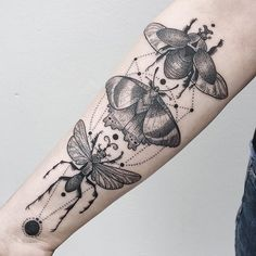 Japanese rhinoceros beetle, zodiac moth, and tarantula hawk wasp by @freeorgy…