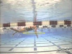 Video: Developing World Class Open Water Swim Mechanics Open Water Swimming, Swimming Diving, Swimming Tips, Swimming Pools, Swimming Workouts, Ironman Triathlon, Triathlon Training, Training Tips, Cycling Tips
