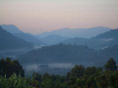 Bwindi Impenetrable National Park, Uganda--I have to try to penetrate the impenetrable!