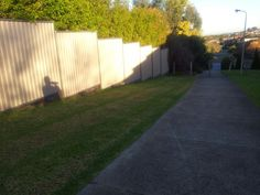 Me and my shadow walking down the Avenue I feel a song coming on who sings this song