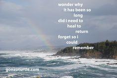 #gonzoturtle #poetry #poem #Oregon gonzoturtle.com