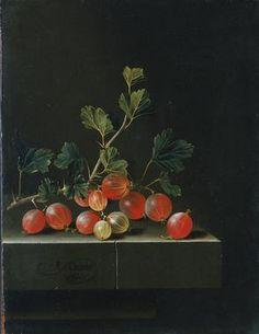Adriaen Coorte - gooseberries on a table  1655/ 1667 - 1707/ 1710 www.vlaamsekunstc...