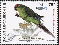 New Caledonian Parakeet stamps - mainly images - gallery format