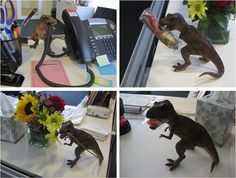 Chronicling the adventures of Deskosaurus Rex.